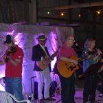 The Rake Up Ceilildh Band
